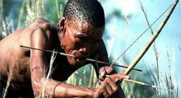 Scientists astonished to learn the truth about African bushmen and poison