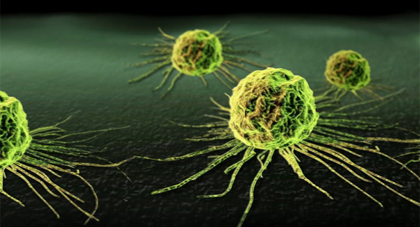 Cancer discovery shocks scientists