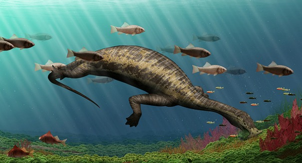 Recently discovered fossil of 'hammerhead species' is first known vegan marine reptile