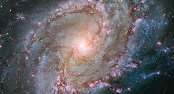What is strangling these galaxies to death?