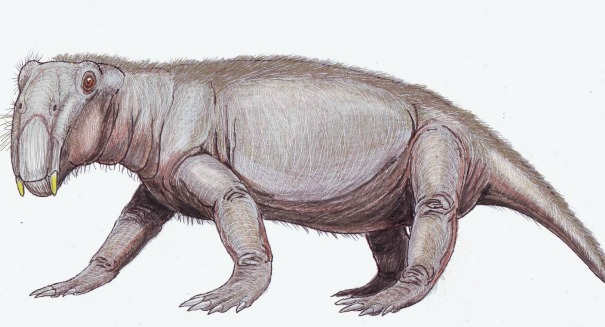Scientists stunned to find out how this weird creature survived a mass extinction
