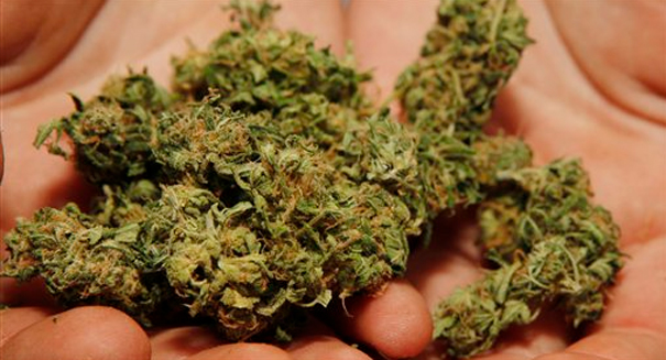 Stunning discovery: Marijuana may be harmful