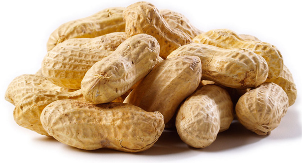 Could peanuts be the cure for peanut allergies?