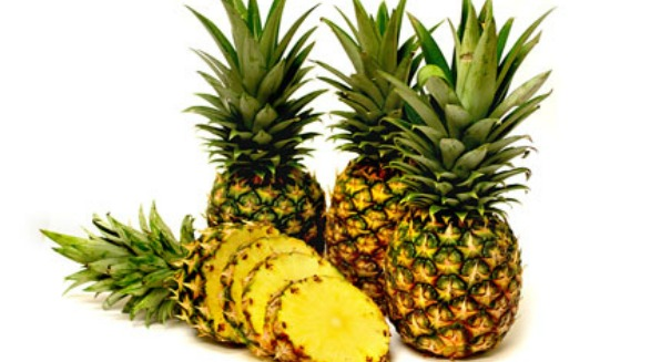 Are pineapples the Global Warming crop of the future?